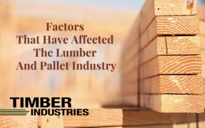 Why have the lumber prices been so high?