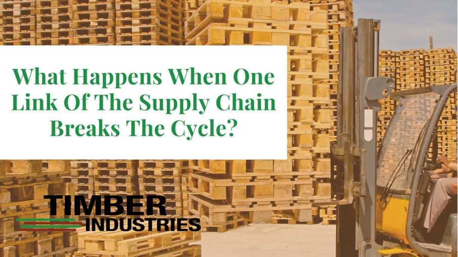 What Happens When One Link of the Supply Chain Breaks the Cycle?